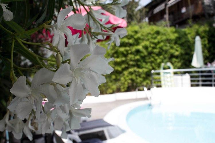 Hotel Anapaya-Lignano_4
