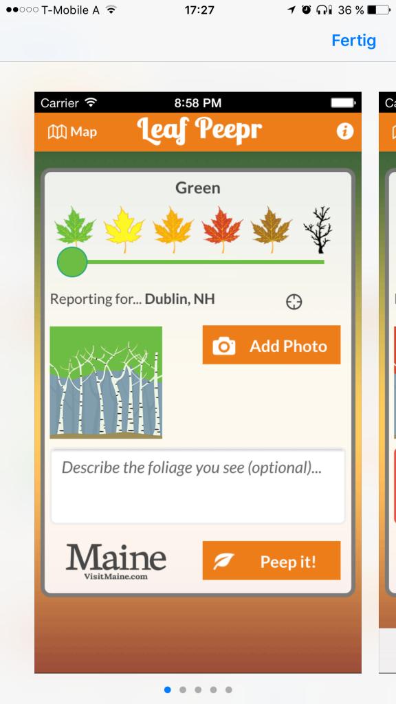 Leaf Peepr App